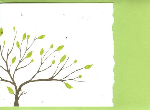 (Grow A Note® Tree with Deckle Edge Cards)