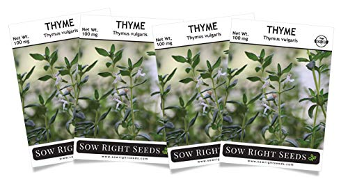 Sow Right Seeds - Thyme Seed for Planting - All Non-GMO Heirloom Thyme Seeds with Full Instructions for Easy Planting and Growing Your Kitchen Herb Garden, Indoor or Outdoor; Great Gift (4 Packets)