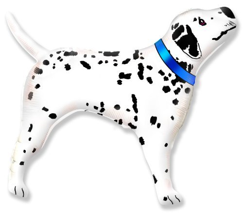 Dalmation Dog with Blue Collar 26 inch Foil ()