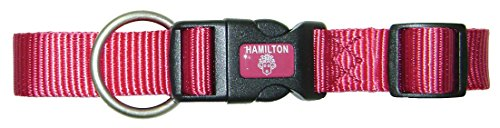 Image of Hamilton Adjustable Dog Collar with Brushed Hardware
