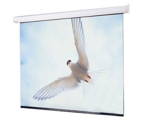 Draper Targa Projection Screen - Electric - 47.25