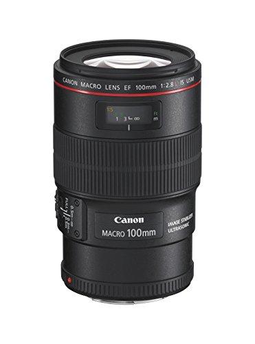 Canon EF 100 mm 2,8 L IS USM Macro-Objektiv (67 mm Filtergewinde, bildstabilisiert) schwarz