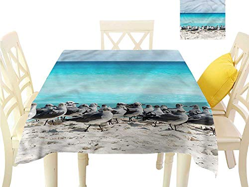 (WilliamsDecor Small Square Tablecloth Seagulls,Seabird on Cancun Beach BBQ Tablecloth W 70