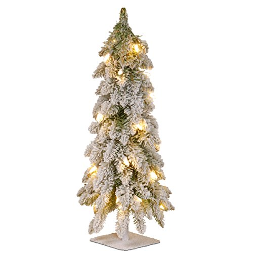 National Tree 24 Inch Snowy Downswept Forestree with 50 Clear Lights with a Metal Plate (FTDf1-24ALO-1)