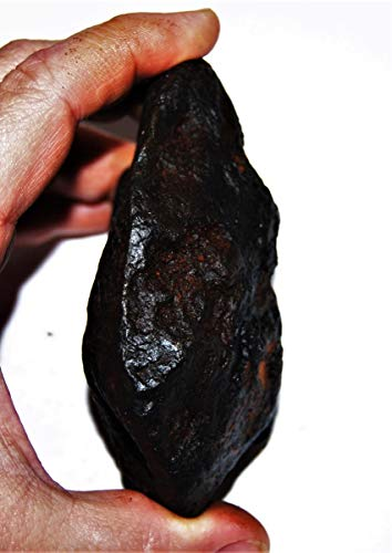Fossil, Meteorites, & More NANTAN Iron Nickel Meteorite -Genuine-691.7 Grams+ Card & COA# 14359 27o by Fossil, Meteorites, & More (Image #3)