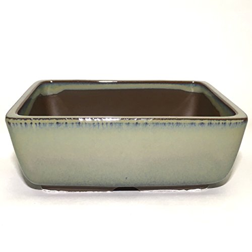 Bonsai Pot Ceramic Rectangle Round shaped corners Moss Green Glazed (5.5