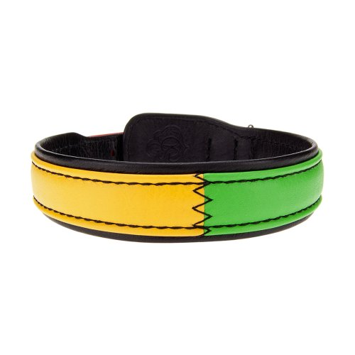 Bitch and Stud Chic Italian Leather Dog Collar, Size 4, Reggae