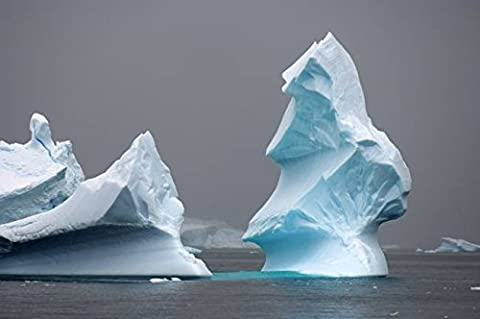 Wall Art Print entitled Iceberg Floating Off The Western Antarctic Peninsu by Design Pics | 32 x 21 (One Direction Huge Posters)