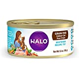 Halo Grain Free Natural Wet Cat Food, Indoor Whitefish Recipe, 5.5-Ounce Can (Pack Of 12)