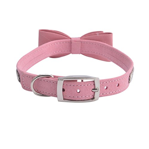 Crystals For Dog Collars