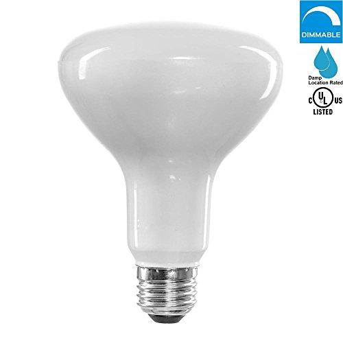 2000 lumen led flood bulb - 4