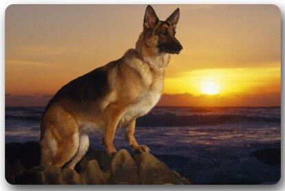 TSlook Doormat German Shepherd Dog Indoor/Outdoor/Front Welcome Door Mat(30