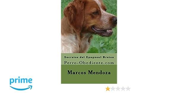 Secretos del Epagneul Breton: Perro-Obediente.com: Amazon.es: Marcos Mendoza: Libros