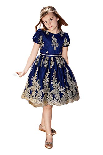 Chasing Fireflies Girls Cameo Dress Holiday Party Flower