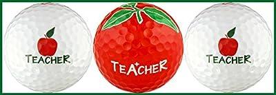 Teacher w/ Apple Variety Golf Ball Gift Set