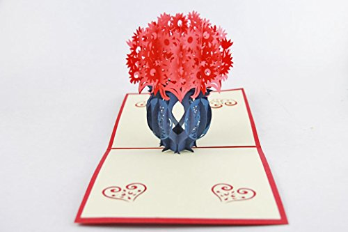IShareCards Handmade Pop Up 3D Thank You Greeting Cards for Every Occasion - Flowerpot (Red (Greeting Flower Pot)