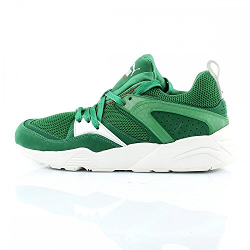 Baskets Glory Puma Blaze Of Green X YqwY0Z