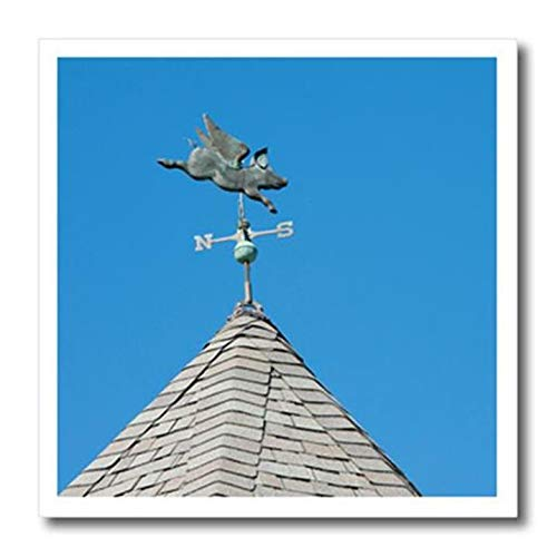 - 3dRose USA, Michigan, Mackinac Island. When Pigs Fly Rooftop weathervane. - Iron On Heat Transfer, 10 by 10-inch, for White Material (ht_190230_3)