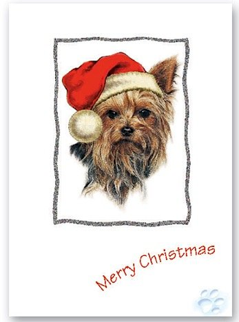 Yorkshire Terrier Dog Christmas Card Yorkie Xmas Cards Amazon Co Uk