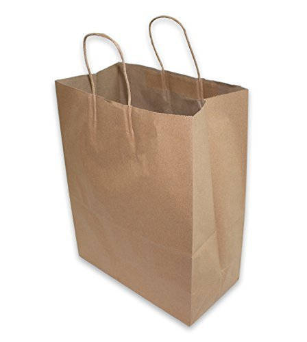 2dayShip Paper Retail Shopping Bags with Rope Handles 13 x 7 x 17 inches, 50 Count