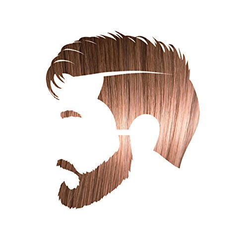 Manly Guy LIGHT BROWN Hair, Beard, & Mustache Color: 100% Natural & Chemical Free (Mens Light Brown Hair Dye compare prices)