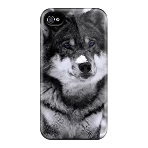 Durable Case For The Iphone 4/4s- Eco-friendly Retail Packaging(winter Wolf)