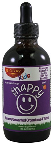 Fruiting Body Extract Alcohol (BioRay Inc., Kids, NDF Happy, Peach Flavor, 4 fl oz (120)