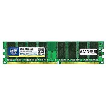 Lufuqiang Tarjeta de Memoria X006 DDR 266 MHz 1 GB AMD ...