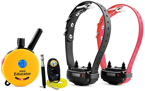 Bundle of 2 items - E-Collar - ET-302 - 1/2 Mile Remote Waterproof Two Dog Trainer Mini Educator - Static, Vibration and Sound Stimulation collar with PetsTEK Dog Training Clicker and Dog Whistle