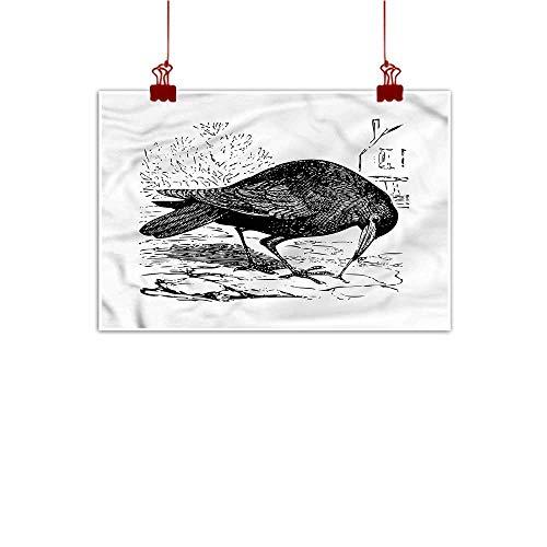 J Chief Sky Canvas Wall Art Raven,Bird Figure Sketch Design 48