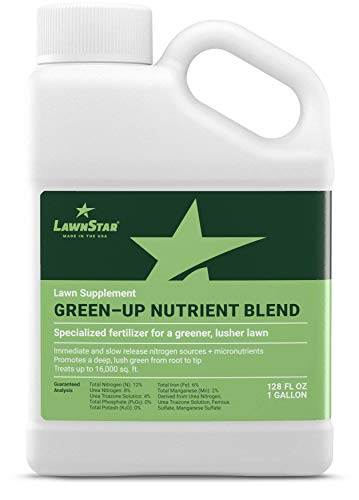 Nitrogen Fertilizer Liquid - LawnStar Green-Up Lawn Supplement + Booster w/Slow Release Nitrogen + Micronutrients - Rapid Greening on All Grasses, All Year Round Solution, Spring & Summer Turf Fertilizer - American Made (1 GAL)