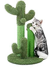 PAWZ Road Cactus Cat Scratching Post with Natural Sisal Ropes, Interactive Ball, Cat Scratcher for Cats and Kittens Green