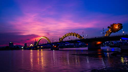 Vietnam Dragon Bridge Backdrop 8x6ft Vinyl Riverside City Night Photography Background Landmark City Light for Wedding Birthday Backdrop Photo Studio Backdrop Theme Party Backdrop E00T9103 (8' Digital Album Photo)