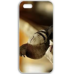 Apple iPhone 5 5S Cases Customized Gifts For Animals crazy bird Animals Birds White