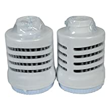 Rubbermaid Filtration Bottle Filter Refill, Pack of 2