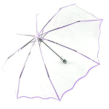 Pequeño Fresh transparente paraguas de cúpula Creative paraguas plegable compacto, morado