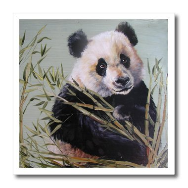 Sitting Bear Case - 3dRose ht_44375_2 Panda Bear Sitting in Bamboo-Iron on Heat Transfer Paper for White Material, 6 by 6-Inch