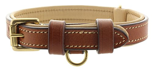 - Viosi Leather Padded Dog Collar - Made of Genuine Kingston Luxury Leather [Small, Brown]