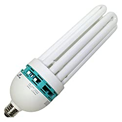 LongStar 00199 - FE-IIIB-105W/27K 5 8 Tube Screw Base Compact Fluorescent Light Bulb