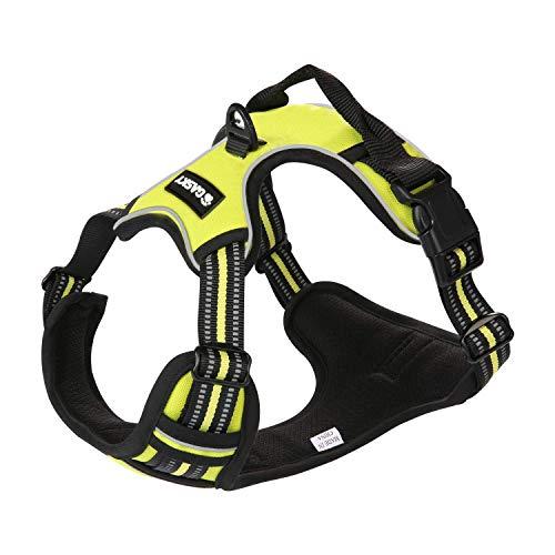 Gasky LED Dog Harness No Pull Pet Safe Vest Harness - Adjustable Outdoor Reflective 1000D Oxford Material Vest for Medium Large Dogs, Easy Control