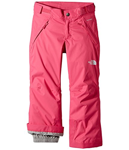 The North Face Youth Girls' Freedom Insulated Pant - petticoat pink, m/10-12 (Face Girls The Ski Pants North)