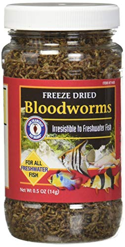 Food Bloodworms Fish (San Francisco Bay Brand/Sally's Freeze Dried Bloodworms - 0.5 oz.)