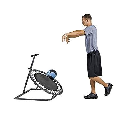 Power Systems Medicine Ball Rebounder