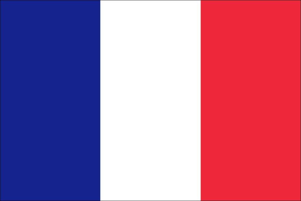 太田旗店 フランス 国旗 地球にやさしい外国旗 (90×135cm) B07JHJ55DT 90×135cm