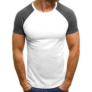 Men's Casual Raglan Block Short Sleeve T-Shirts Slim Fit Stretch Crew Neck Wicking Baseball Tee Tops (L, X-White)