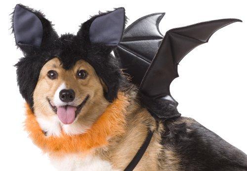 Animal Planet PET20103 Bat Dog Costume, Medium by Animal Planet (Bat Dog Costumes)
