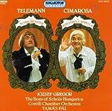 Il Maestro Di Capella / Der Schulmeister