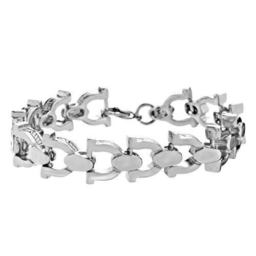 Horseshoe Magnetic Bracelet - STEEL EVOLUTION Stainless Steel 9 Inch Horseshoe Link Bracelet for Men
