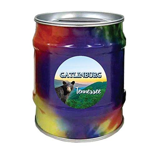 Gatlinburg Tennessee Souvenir Great Smoky Mountains Bear Tie Dye Tin Money Bank