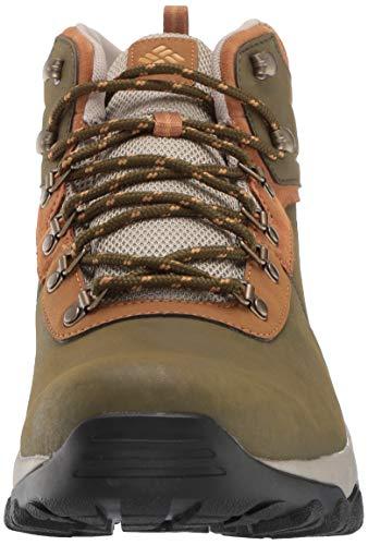 Columbia Men's Newton Ridge Plus II Waterproof Ankle Boot Silver sage, Dark Banana 7 Regular US by Columbia (Image #4)